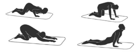 Tipos de stretching